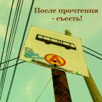После прочтения — съесть! Алёна Половнева